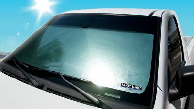 Dash Designs - 2006 CHEVROLET TRAILBLAZER EXT SILVER SHIELD